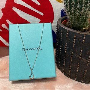 VINTAGE Tiffany & Co. Elsa Peretti Necklace